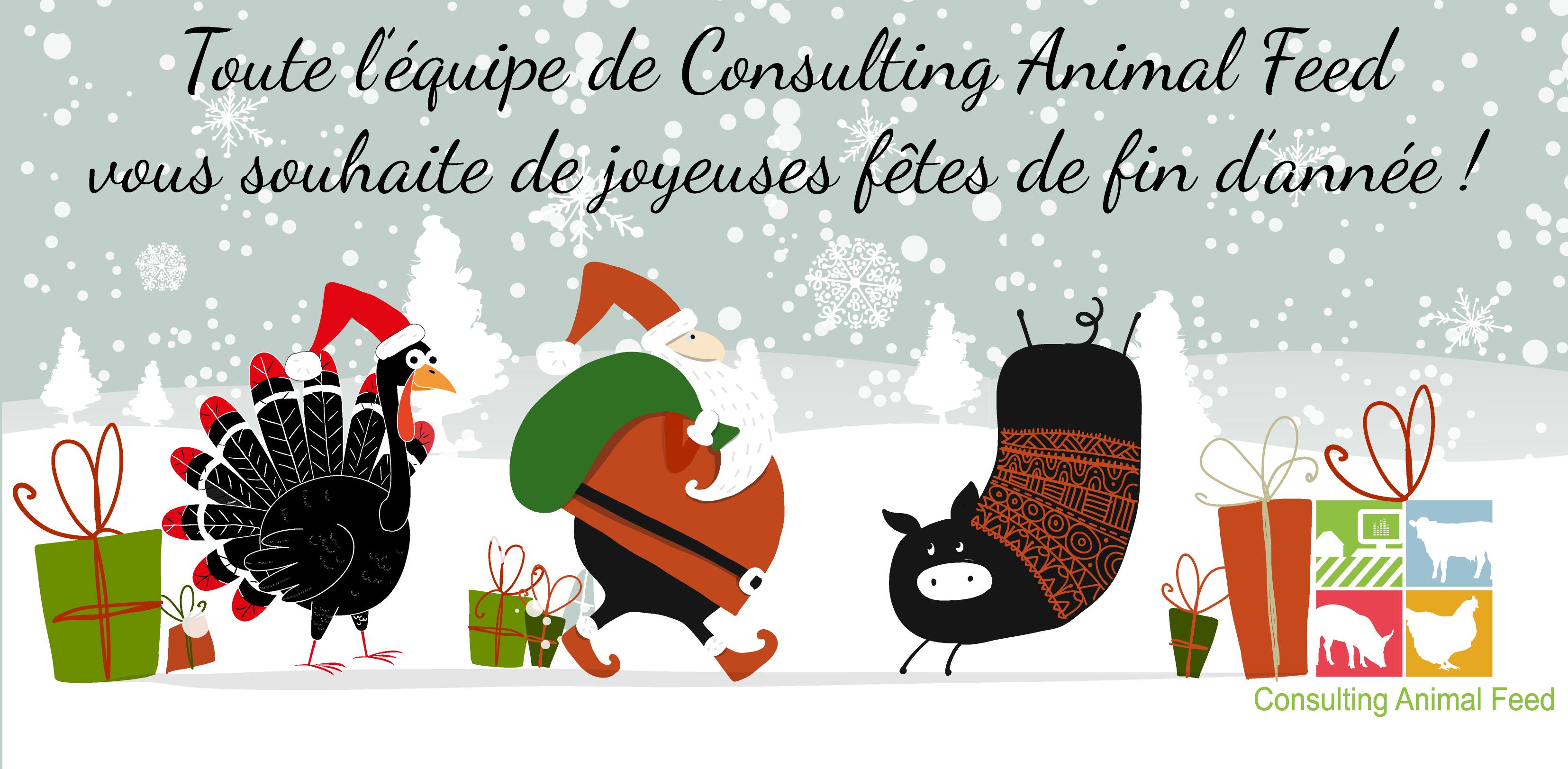 Consulting Animal Feed vous souhaite de belles fêtes !